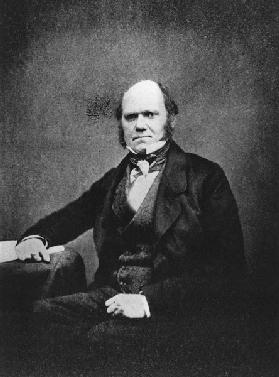 Portrait of Charles Darwin (1809-82) (b/w photo)