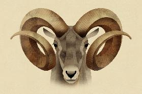 Urial