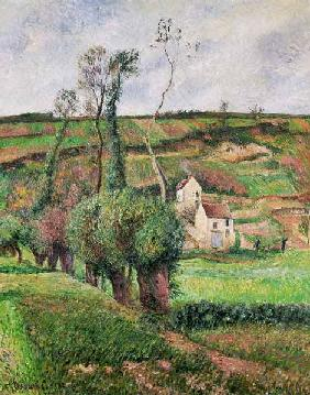 The Cabbage Slopes, Pontoise 1882