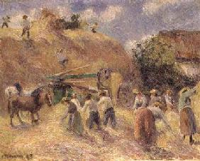 The Harvest 1883