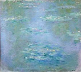 Waterlilies 1903