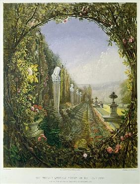 The Trellis Window, Trentham Hall Gardens, from ''Gardens of England'', published 1857