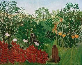 Tropical Forest with monkey