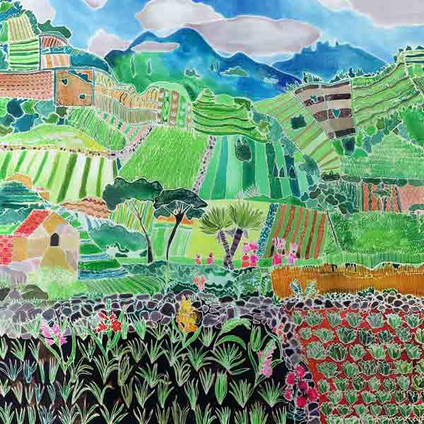 Cabbages and Lilies, Solola Region, Guatemala, 1993 (coloured inks on silk)