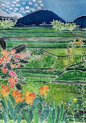 Lovina Ricefields with Lilies and Frangipani, Bali, 1996 (coloured inks on silk)