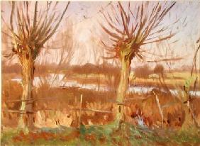 Landscape with Trees, Calcot-on-the-Thames c.1888