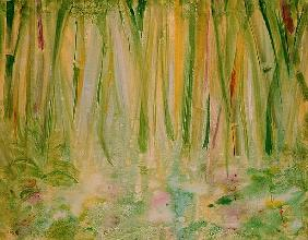Impression of the Rain Forest, 1991 (acrylic on canvas)