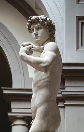 David, detail of upper section by Michelangelo Buonarroti (1475-1564) 1504