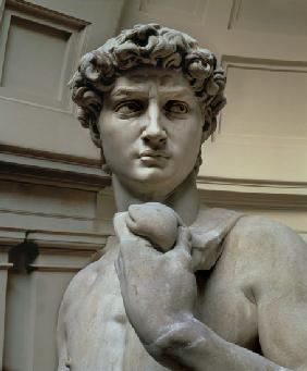 David, head of sculpture by Michelangelo Buonarroti (1475-1564) 1504