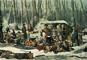 American Forest Scene - Maple Sugaring