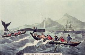 The Whale Fishery 'Laying on', 1852 (litho) 19th