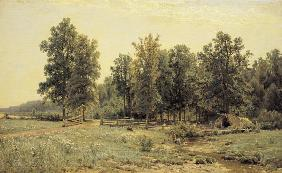 Shishkin / Edge of Oak Woods / Painting