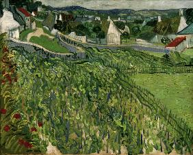van Gogh / Vineyards at Auvers / 1890