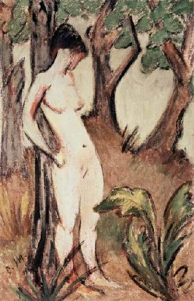 Nude Standing Against a Tree