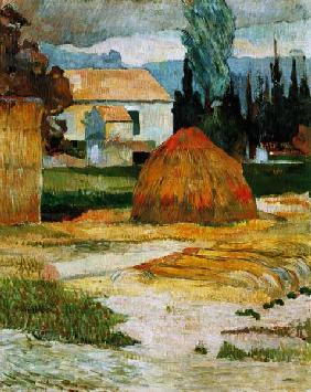 Gauguin, Paul : Bauernhaus in Arles