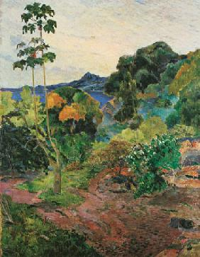 Gauguin, Paul : Landschaft auf Martinique