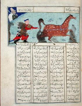 Ms C-822 Roustem capturing his horse, from the 'Shahnama' (Book of Kings)