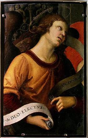Angel, from the polyptych of St. Nicolas of Tolentino 1501