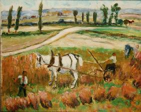 Harvesting with a White Horse (oil on board)