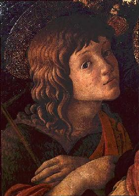 Madonna and Child with St. John the Baptist, detail of the young saint