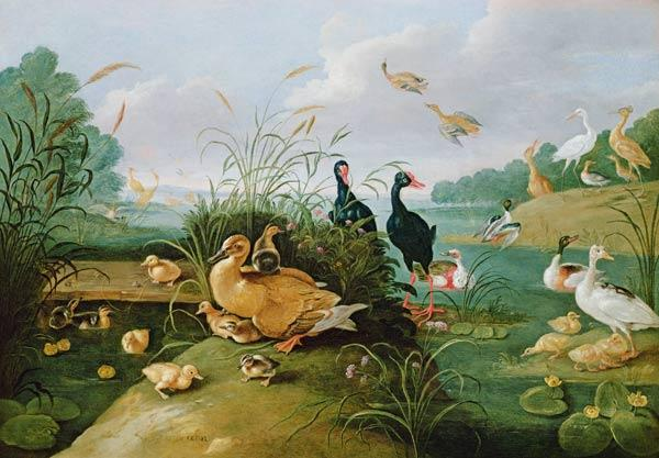 Decorative fowl and ducklings