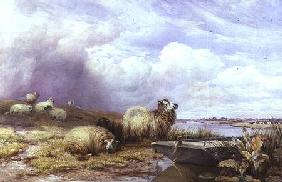 A Landscape with Sheep and boat 1866