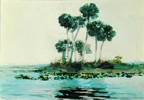 St. John's River Florida 1890  on